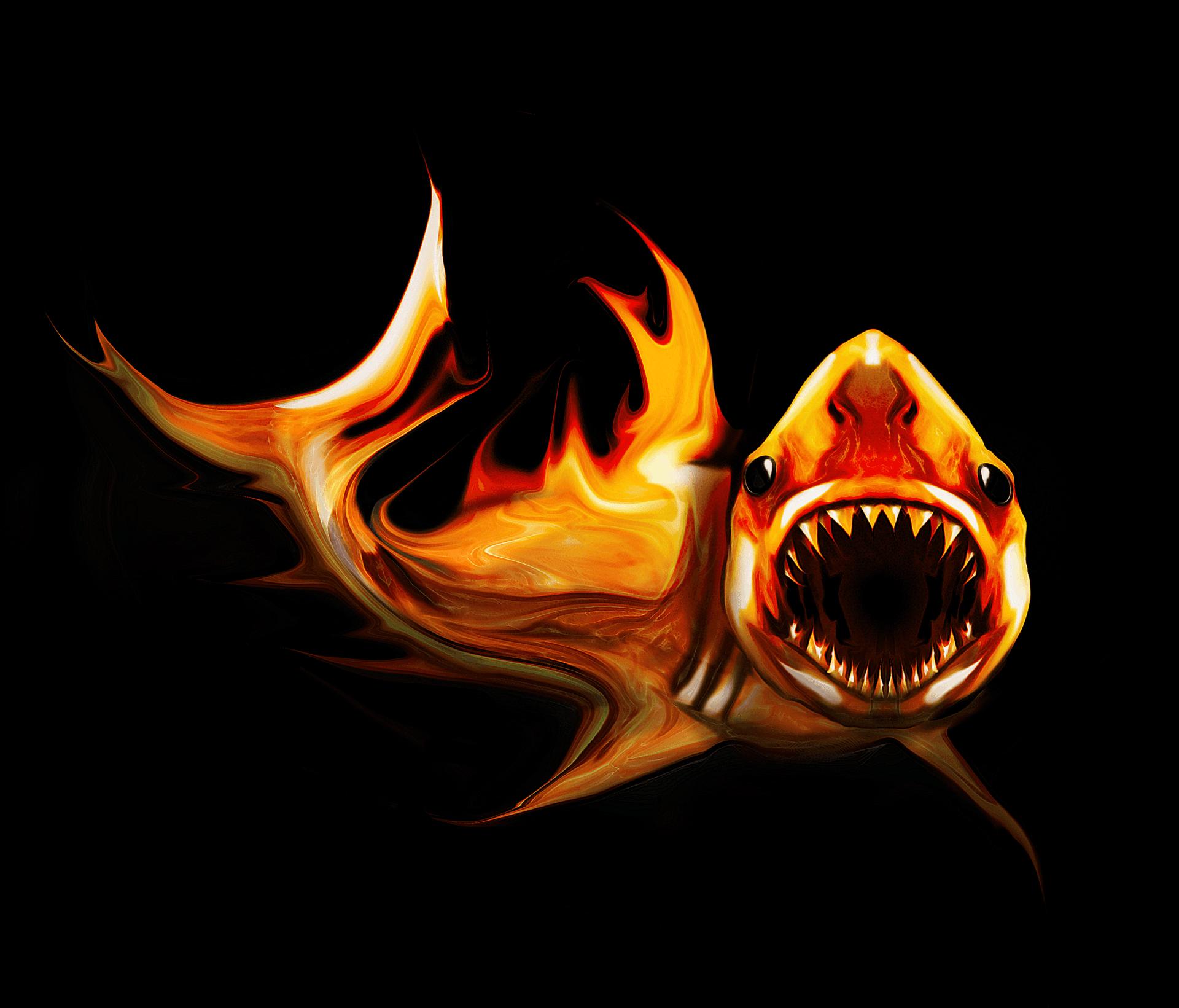 white_shark1_final-0f4a513b